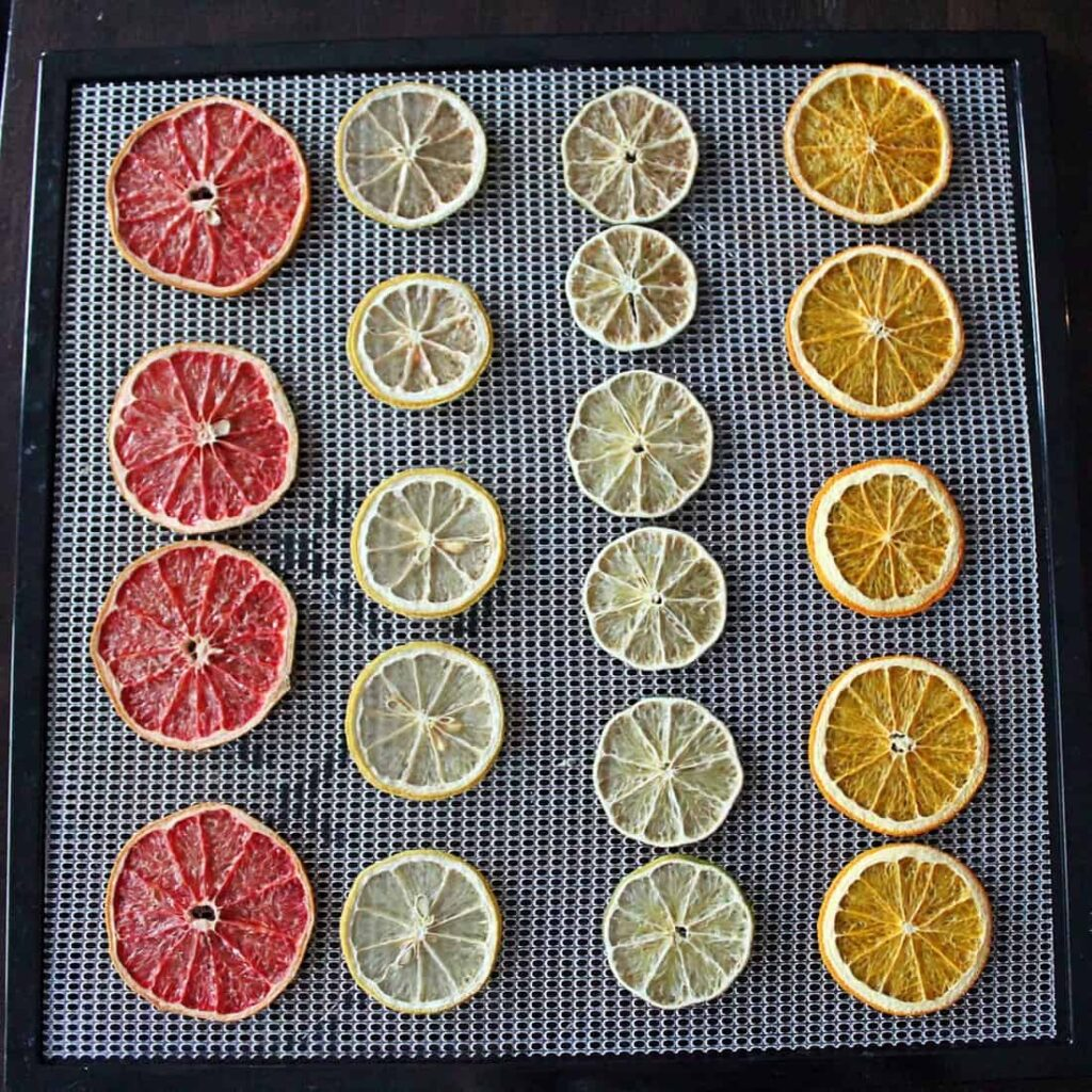 paleo dehydrated citrus