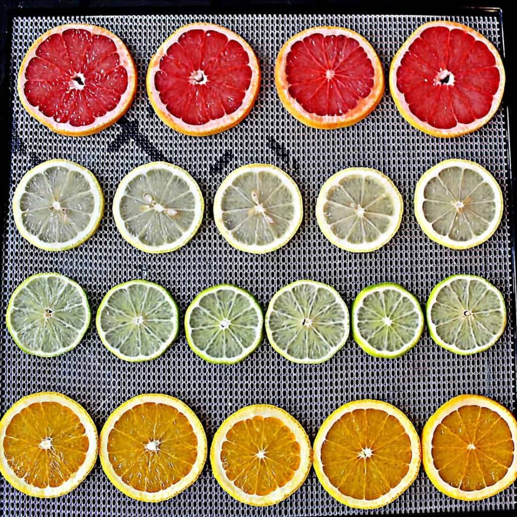paleo dehydrated citrus fruit