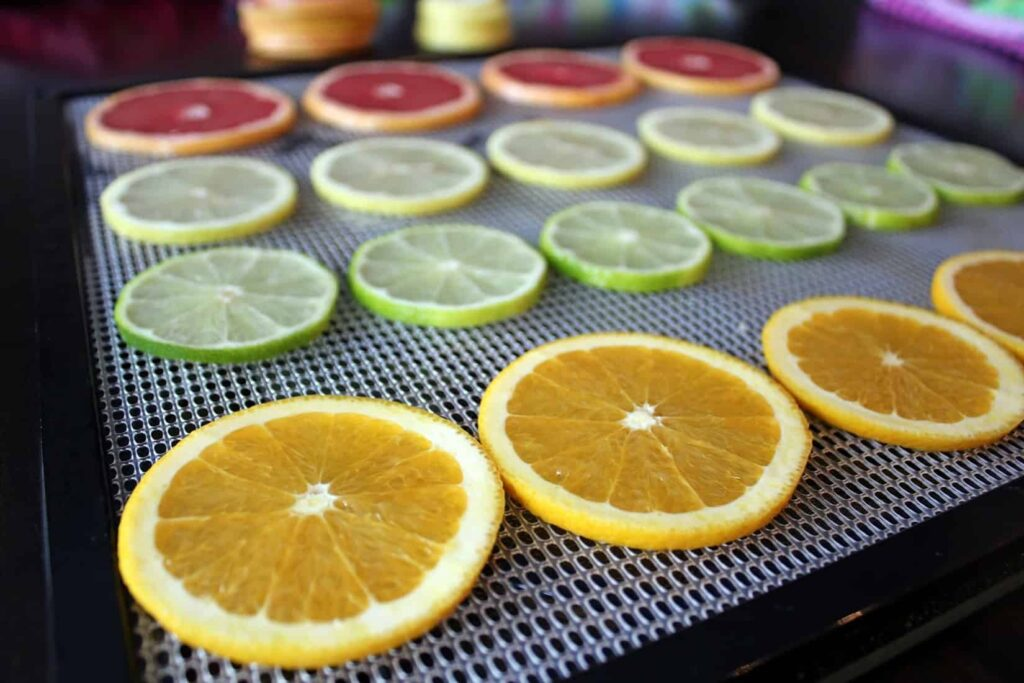paleo dehydrated orange lemon lime grapefruit